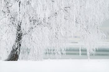 Полезные советы от врача: как избежать обморожения при минусовой температуре