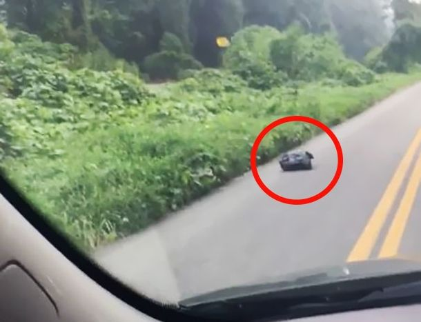 Женщина увидела мешок на дороге и остановилась, чтобы посмотреть что там…