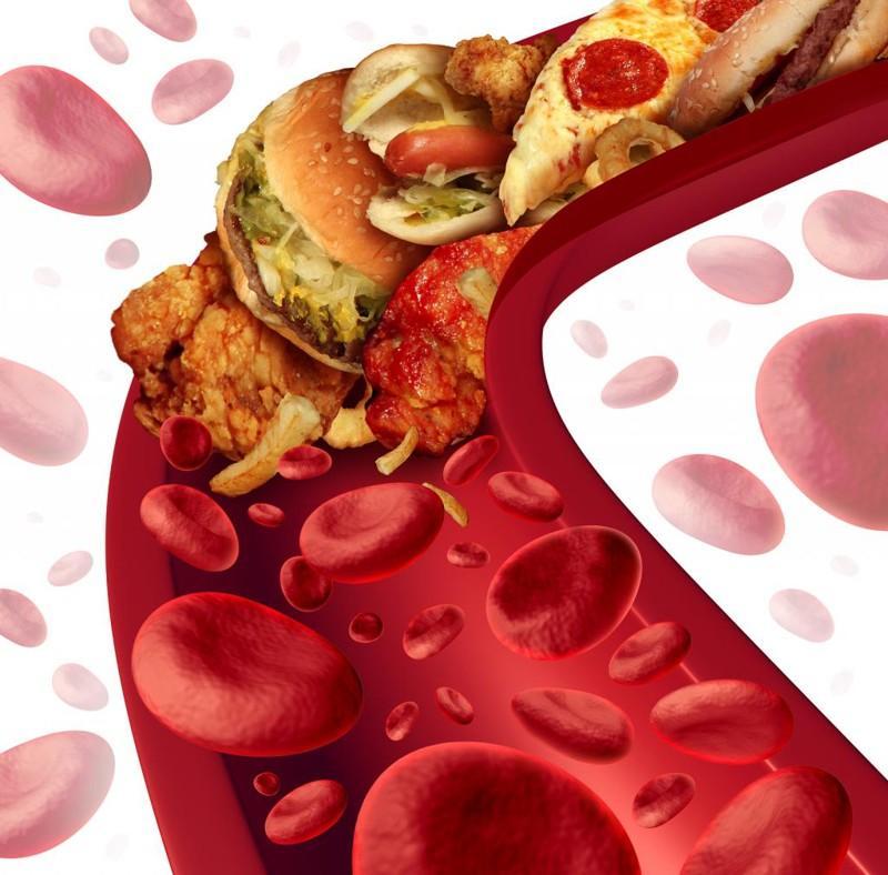 Холестерин. Kрупнейшая афера XX века (9 фото)