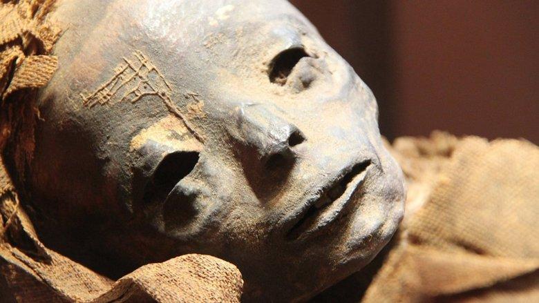 В Египте обнаружена мумия с …