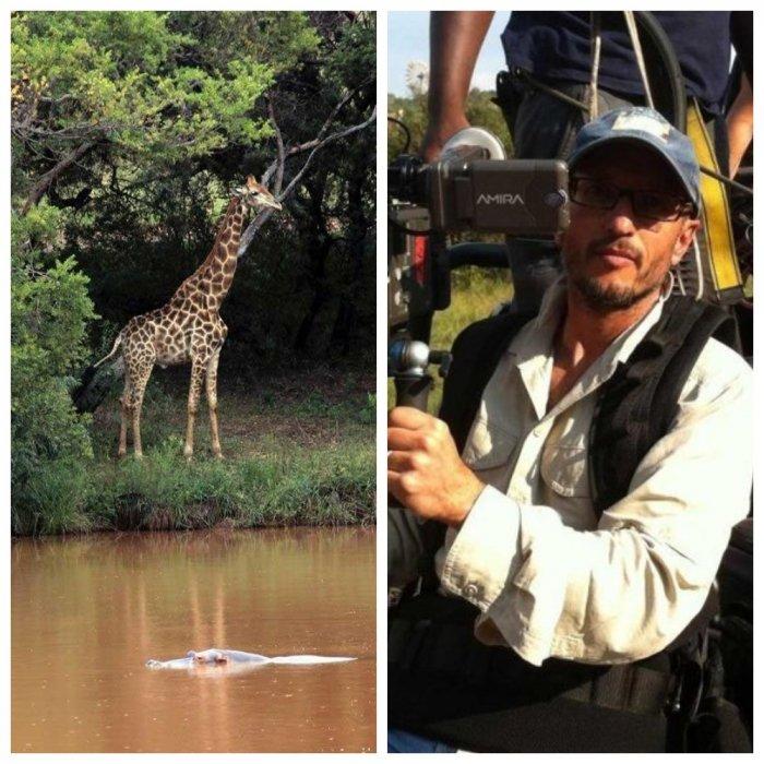 В ЮАР известный режиссер погиб после встречи с жирафом