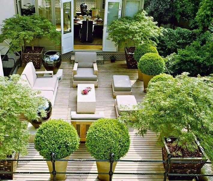 терраса с растениями