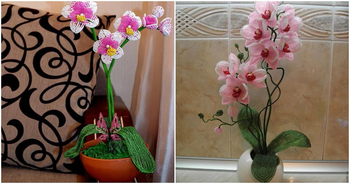 Орхидеи из бисера, которые будут цвести в вашем доме круглый год