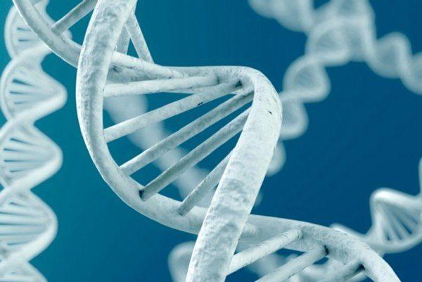 6 неожиданных фактов о том, как гены влияют на ваш организм