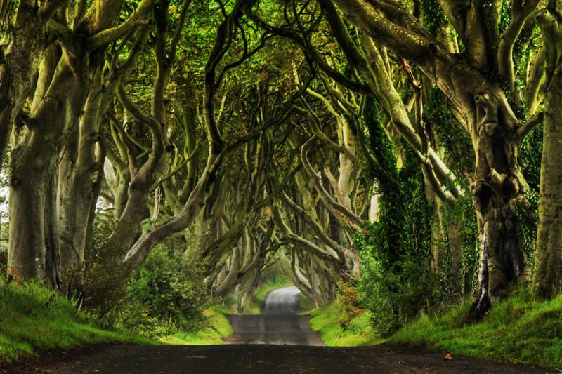 Северная Ирландия: места съёмок культового сериала «Игры Престолов»