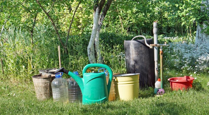удобрения, бочка, полив, сад