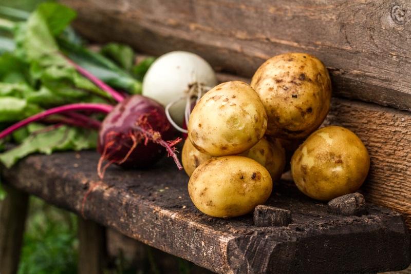 варить овощи для винегрета