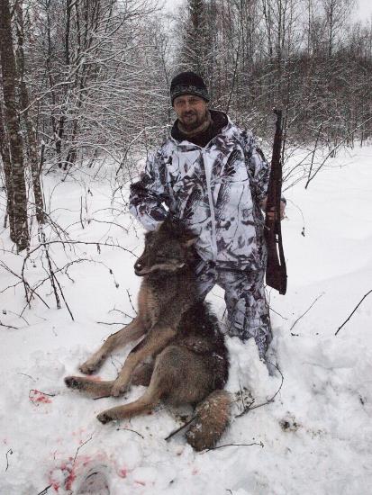 «Дуплетный» трофей, или Два знакомства с волками