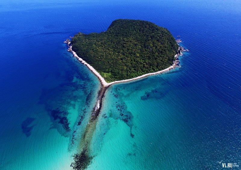 Приморский край- остров Петрова, Тисовая роща