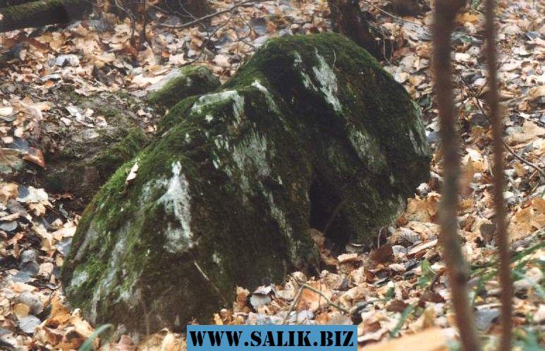 Камень Аусина