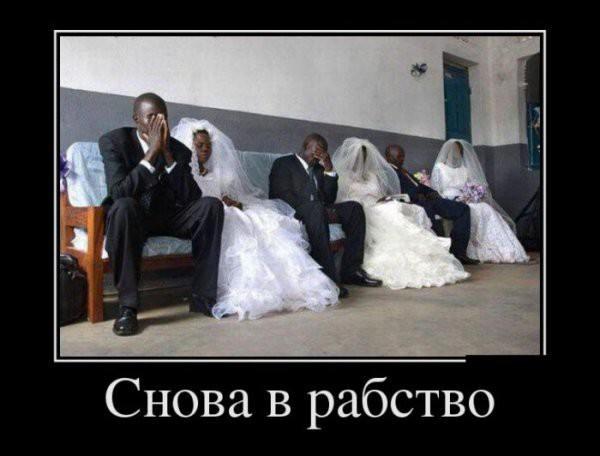 Свадебные демотиваторы (25 фото)