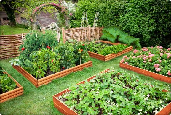 Красивый огород на даче своими руками фото в деревне