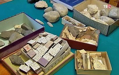 Старейший в мире практикующий археолог из Петербурга отметил 100-летие
