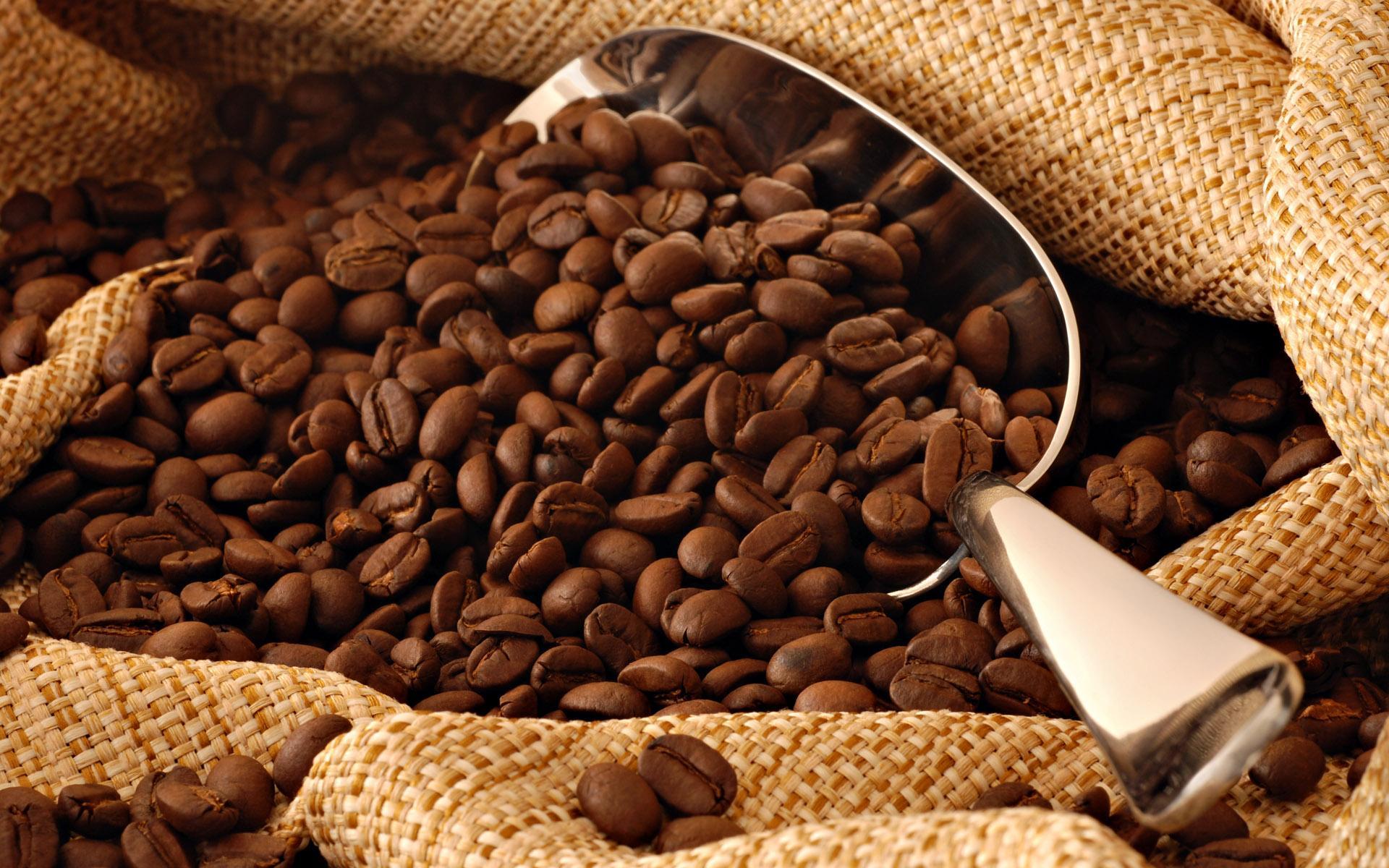 От злокачественной опухоли можно защититься с помощью кофе