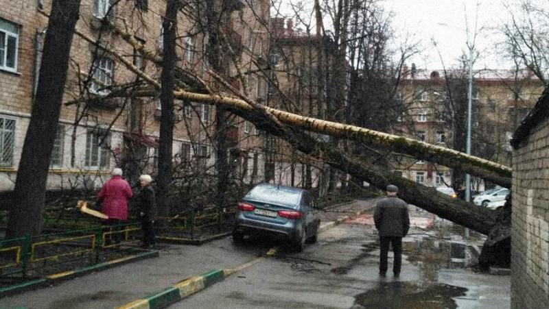 Последствия урагана в Москве и Подмосковье