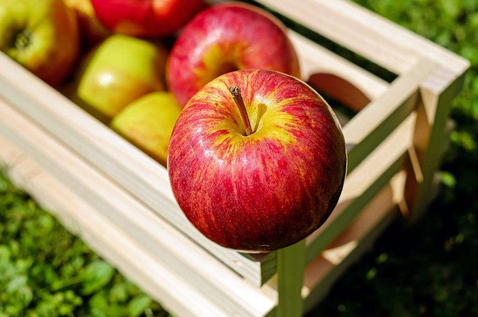 Белоруссия продавала России чужие яблоки и грибы