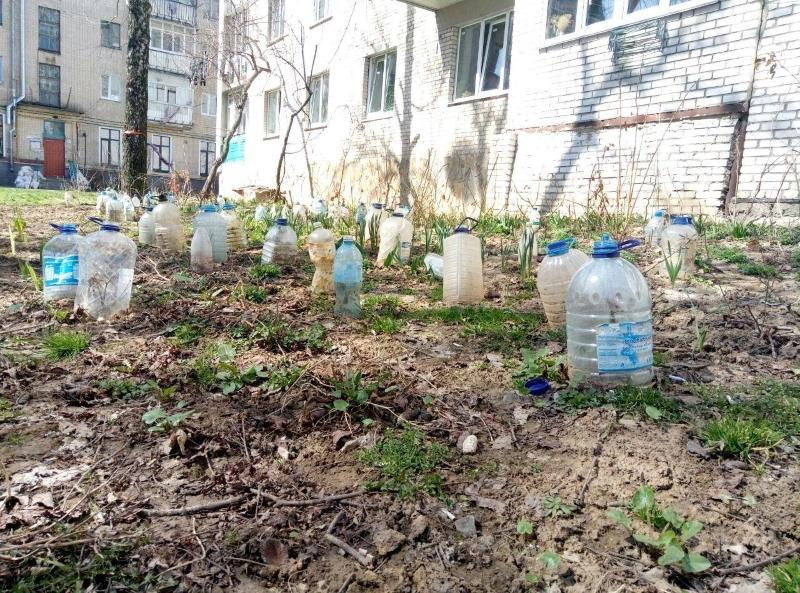 Дачные трюки с пластиковыми бутылками