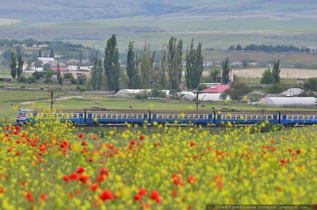 В Крыму электричка столкнулась с микроавтобусом. Пятеро погибших
