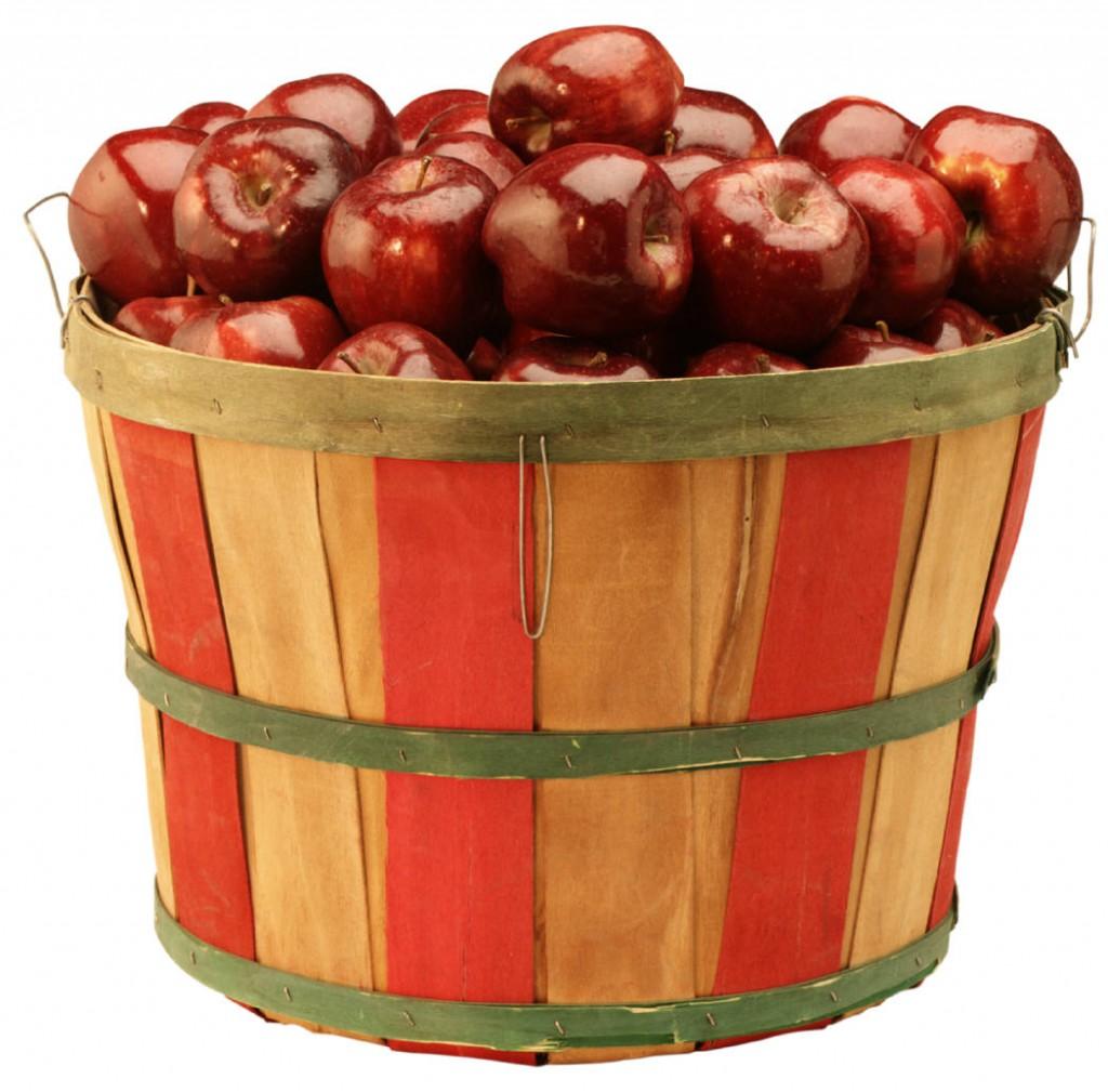 На этой странице собраны материалы по запросу диета завтрак яйца обед грудка курицы ужин грейпфрут