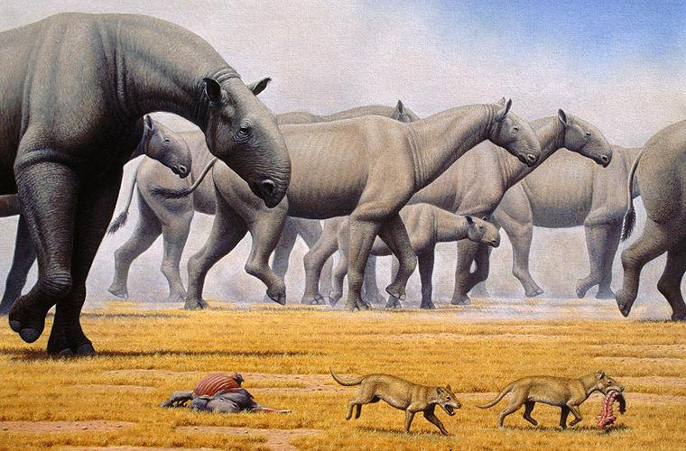 Опасные животные, об исчезно…
