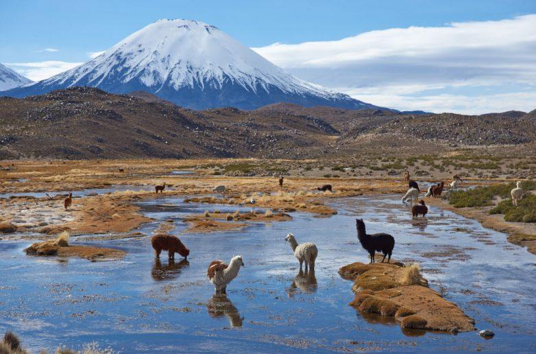 Завораживающие виды природы Южной Америки