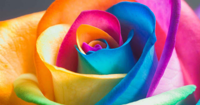 На что влияют цвета по фен шуй