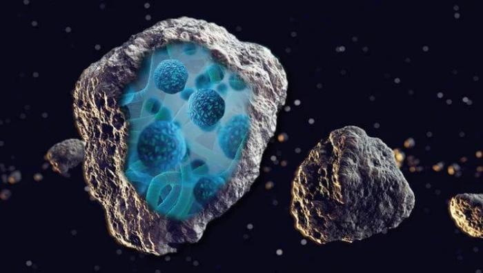 Мог ли новый вирус попасть на Землю с метеоритом