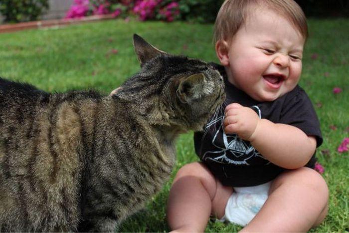 25 забавных фотоподтверждений, что котики и детки — неразлучны!