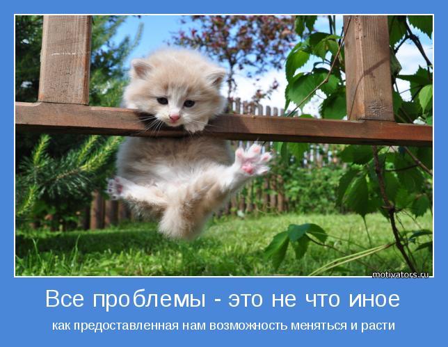 Позитивные, милые и прикольные мотиваторы про животных (10 фото)