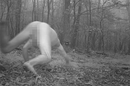 Лесная камера для наблюдения за животными сняла голого мужчину