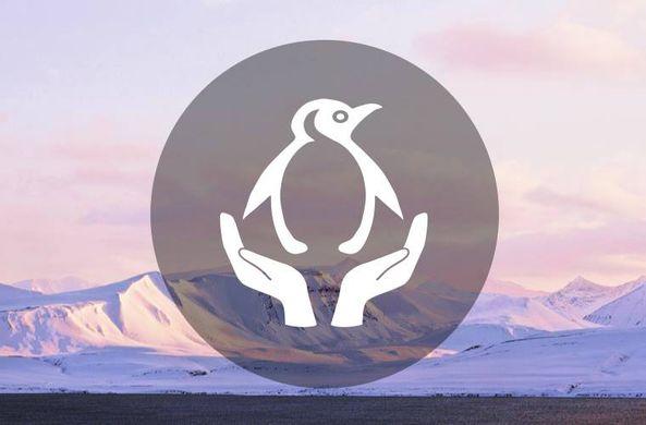 Работа мечты: директор музея в Арктике