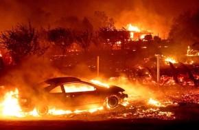 США нанесли огненный удар по…