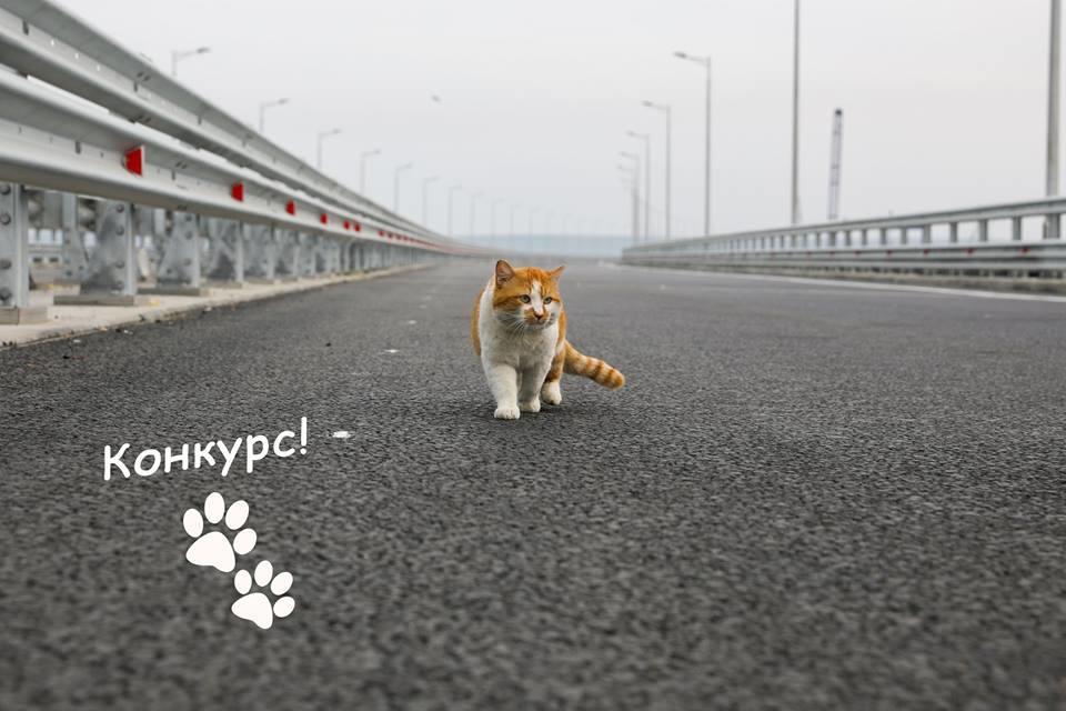 Крымский мост предлагает уга…