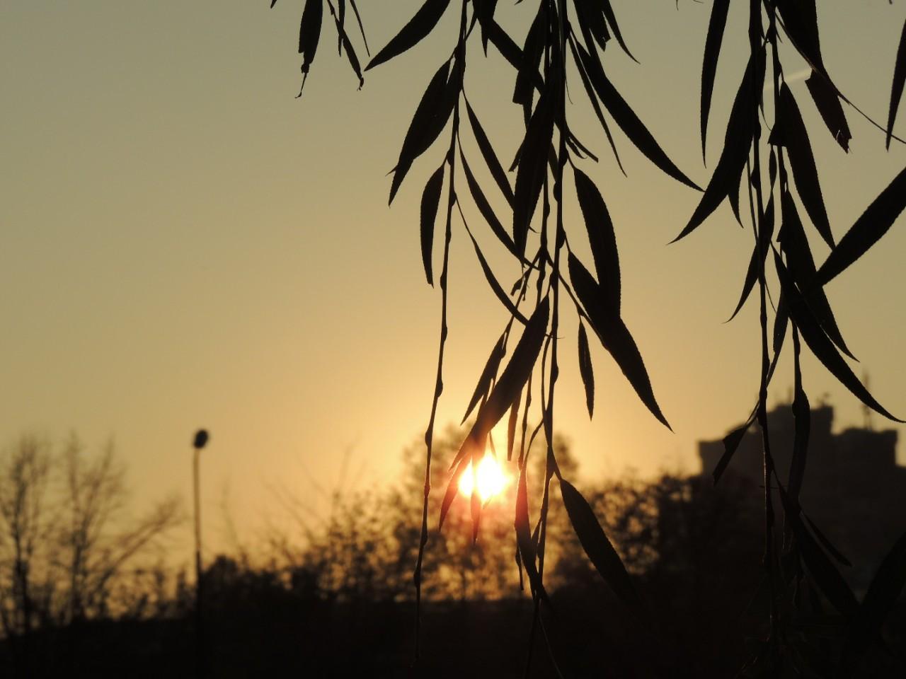 «У природы нет плохого времени года», или как разные сезоны влияют на человека?