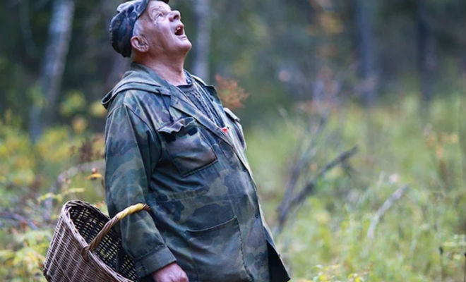 Выходим из леса способом лесников: ставим курс на компасе