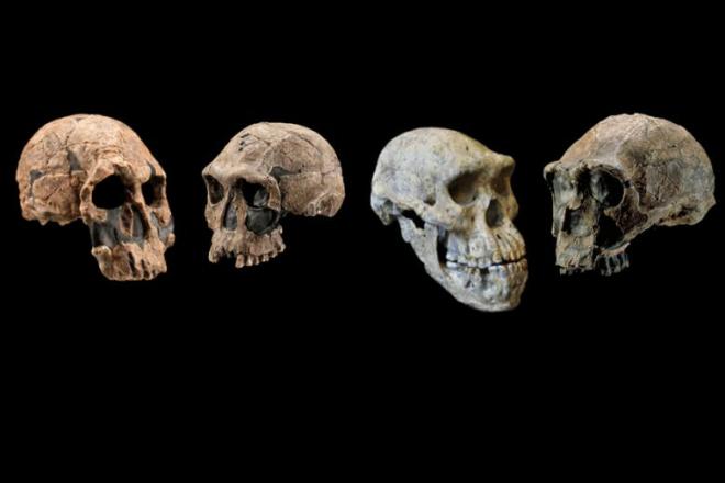 Странная находка в пустыне изменила наш взгляд на историю мира