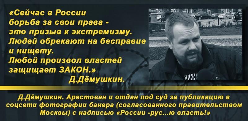 Жириновский против статьи 282 УК РФ в поддержку Дёмушкина