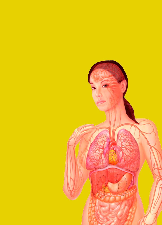 Проблемы с пищеварением, которые могут указывать на инфаркт