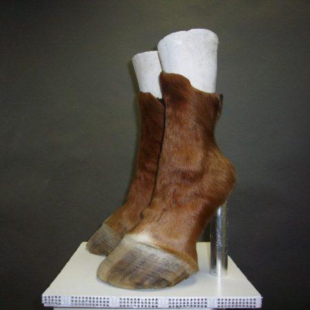 Туфли-копыта