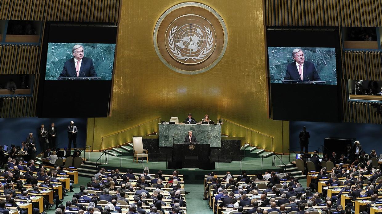 Проститутки в ООН