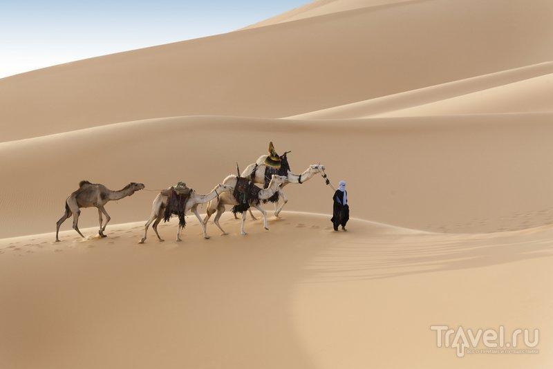 Караван в алжирской пустыне