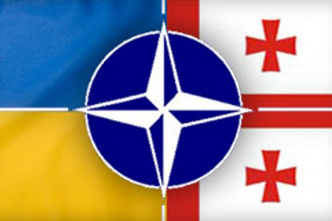 Грузия преподает урок Украине: НАТО вам не поможет