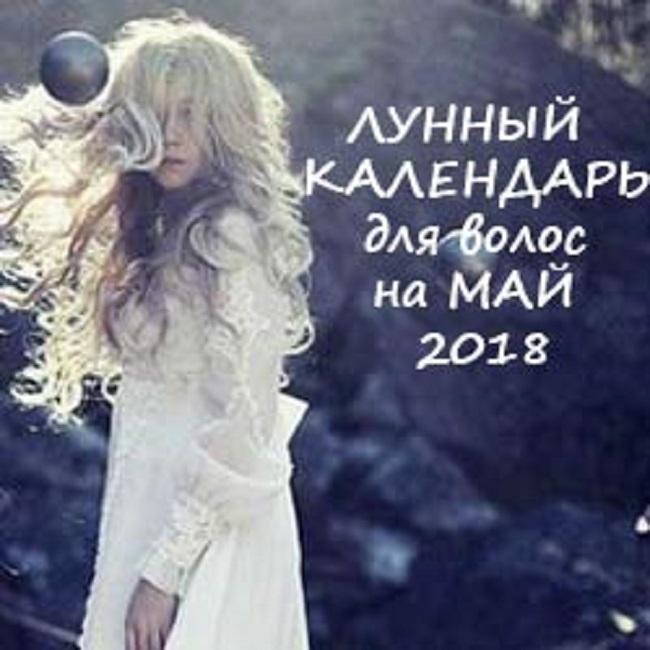hair0518-1.jpg