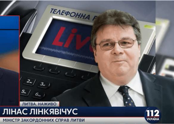 МИД Литвы: «Агрессор обвиняет жертву в нападении» (ВИДЕО)