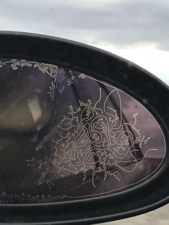 10. Узор инея на боковом зеркале автомобиля Забавные фото, забавные фотки, неожиданные, смешные фото, удивительные фото