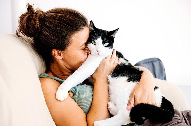Ученые Выяснили, Знают Ли Кошки Свои Имена
