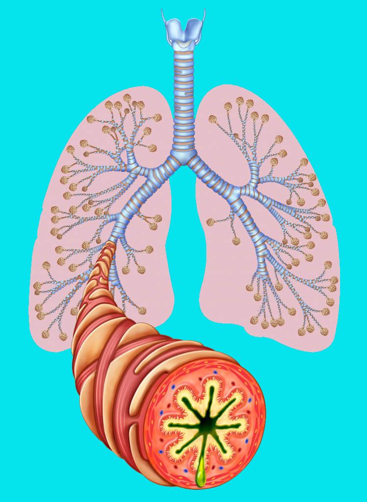 Сухой кашель – признак опасных недугов