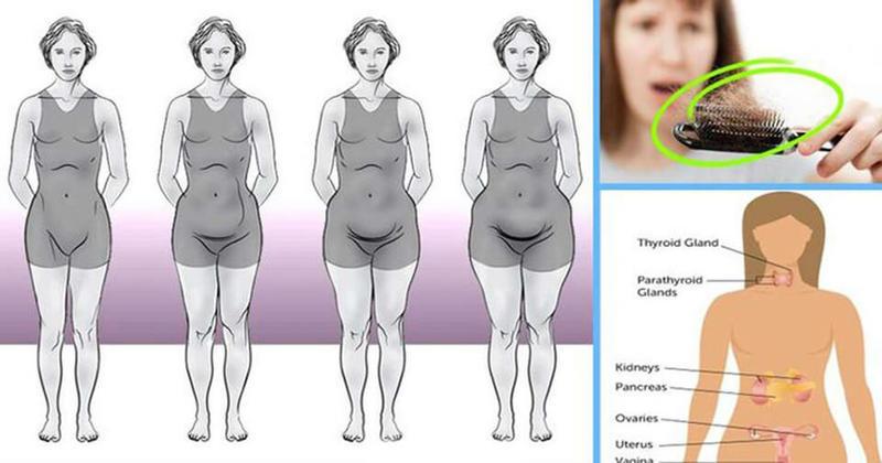 Врач эндокринолог: Из-за чего не получается похудеть