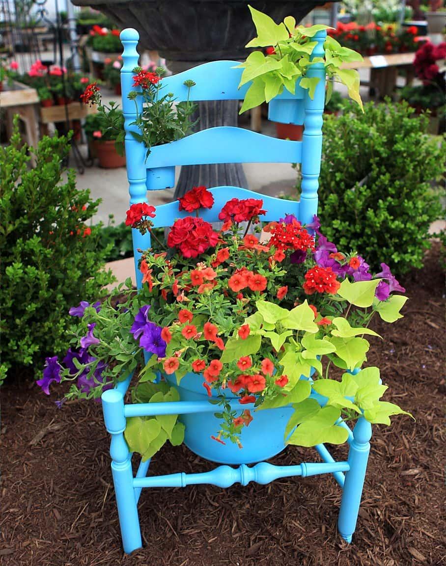 Для оптимальной гармонии, очень важно правильное сочетание на клумбе цветовой гаммы растений
