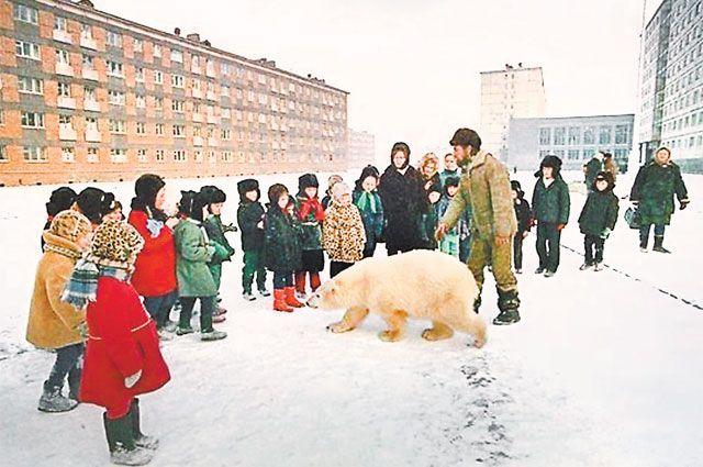 История медведицы, считавшей людей своей семьей